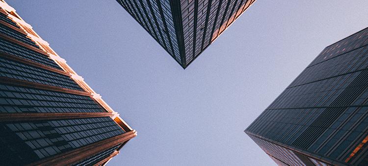 Die Noser Group schliesst ihr Geschäftsjahr 2020 mit einem Wachstum ab